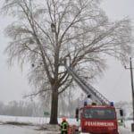 2017-02-03_freimachen_verkehrsweg004